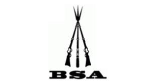 BSA Master pellets